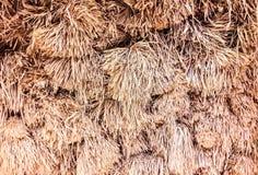 Pared de la paja del arroz Imagen de archivo