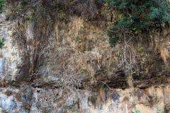 Pared de la roca en archivado Fotos de archivo