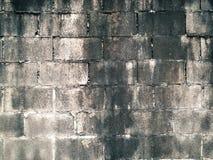 Pared de ladrillo Fotografía de archivo libre de regalías