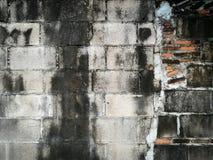 Pared de ladrillo Foto de archivo