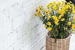 Pared de ladrillo blanca con el interior de la cesta de la flor fotografía de archivo