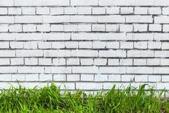 Pared de ladrillo blanca e hierba verde fresca Fotos de archivo libres de regalías