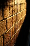 Pared de ladrillo de la puesta del sol de la tarde Imagen de archivo libre de regalías