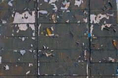 Pared de ladrillo gris de la peladura en la primavera foto de archivo libre de regalías