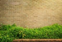Pared de ladrillo marrón decorativa con la hierba Fotos de archivo