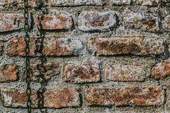 Pared de ladrillo medieval de la antigüedad de la fortaleza con la cadena Foto de archivo