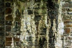 Pared de ladrillo resistida Fotografía de archivo