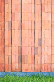 Pared de ladrillo roja con el suelo de la hierba Fotografía de archivo libre de regalías