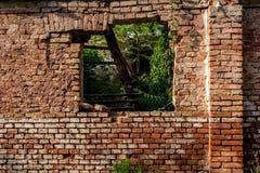 Pared de ladrillo roja con la ventana y ruinas y planta verde y tejado dañado dentro de la casa foto de archivo