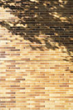 Pared de ladrillos con la sombra del árbol Foto de archivo
