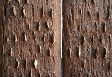 Pared de las tarjetas de madera de la vendimia Fotografía de archivo