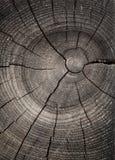 Pared de madera Imágenes de archivo libres de regalías