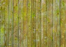 Pared de madera del granero natural cubierta con el musgo o el liquen verde Foto de archivo