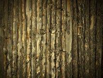 Pared de madera del oro Imagenes de archivo