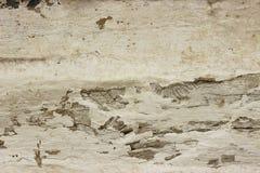 Pared de madera del viejo grunge con el fondo o la textura blanco de la pintura imagen de archivo libre de regalías