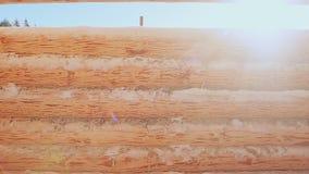 Pared de madera inacabada de la casa en el sol Pared de madera inacabada de la casa en el sol Albañilería canadiense del ángulo E almacen de metraje de vídeo