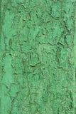 Pared de madera lamentable vieja verde Imágenes de archivo libres de regalías