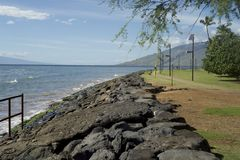 Pared de mar Maui Fotos de archivo