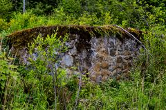 Pared de piedra de 100 años en el bosque overgrown Imagenes de archivo