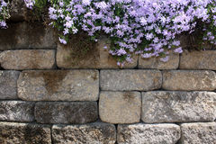 Pared de piedra con las flores Imagen de archivo