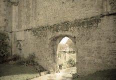 Pared de piedra con una puerta Fotografía de archivo libre de regalías