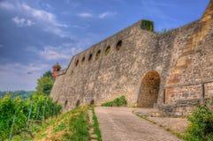 Pared de piedra de la fortaleza de Marienberg (castillo) a través de las uvas a Wur Fotografía de archivo libre de regalías
