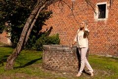 Pared de piedra del ladrillo del árbol de la muchacha bien, Groot Begijnhof, Lovaina, Bélgica fotografía de archivo