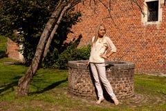 Pared de piedra del ladrillo del árbol de la muchacha bien, Groot Begijnhof, Lovaina, Bélgica imagen de archivo