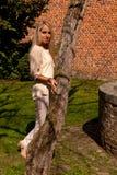 Pared de piedra del ladrillo del árbol de la mujer, Groot Begijnhof, Lovaina, Bélgica foto de archivo