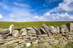 Pared de piedra delante de un prado florecido amarillo Fotografía de archivo libre de regalías