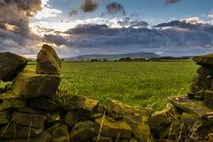Pared de piedra en la granja con la colina de Pendle en distancia en tarde nublada del verano Imágenes de archivo libres de regalías