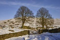 Pared de piedra en paisaje hivernal Foto de archivo libre de regalías