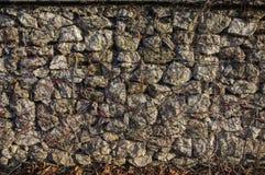 Pared de piedra en un día soleado Imagenes de archivo