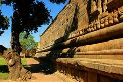 Pared de piedra hermosa del templo antiguo de Brihadisvara en el cholapuram del gangaikonda, la India foto de archivo libre de regalías