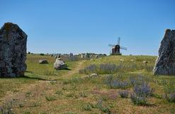 Pared de piedra, isla de Oeland, Suecia imagenes de archivo