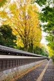 Pared de piedra japonesa tradicional antigua y tejado tejado viejo y b Fotos de archivo