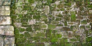Pared de piedra natural vieja cubierta de musgo Foto de archivo