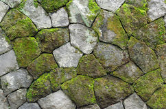 Pared de piedra rústica cubierta de musgo Foto de archivo