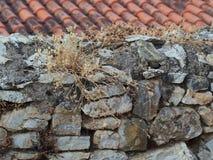 Pared de piedra seca Imagen de archivo
