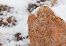 pared de piedra seca Liquen-cubierta en luz del invierno foto de archivo libre de regalías