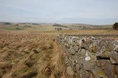 Pared de piedra seca Northumberland fotografía de archivo
