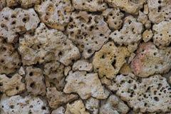 Pared de piedras porosa de piedra pómez Fotografía de archivo libre de regalías