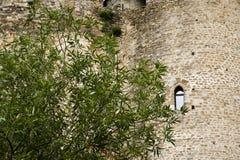 Pared de un castillo de Khotyn Foto de archivo libre de regalías