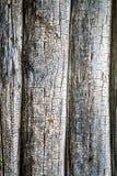 Pared de una pared de la cabaña de madera Fotos de archivo