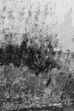Pared decaída texturizada bacground del Grunge Imagenes de archivo