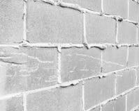 Pared del bloque de cemento Imagenes de archivo