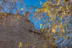 Pared del castillo y del árbol viejos en Denia, España imagenes de archivo