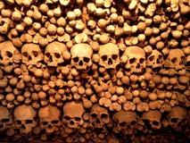 Pared del cráneo Imagenes de archivo