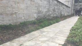 Pared del jardín de la mezquita de Suleymaniye almacen de metraje de vídeo