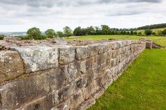 Pared del ` s de Hadrian en Northumberland, Inglaterra fotos de archivo